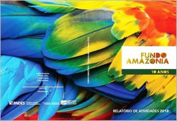 O Tal Fundo da Amazônia_Fundo.jpg